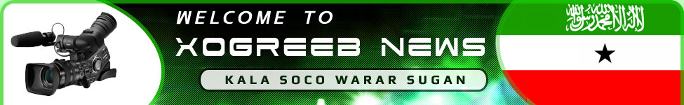 Xogreeb News